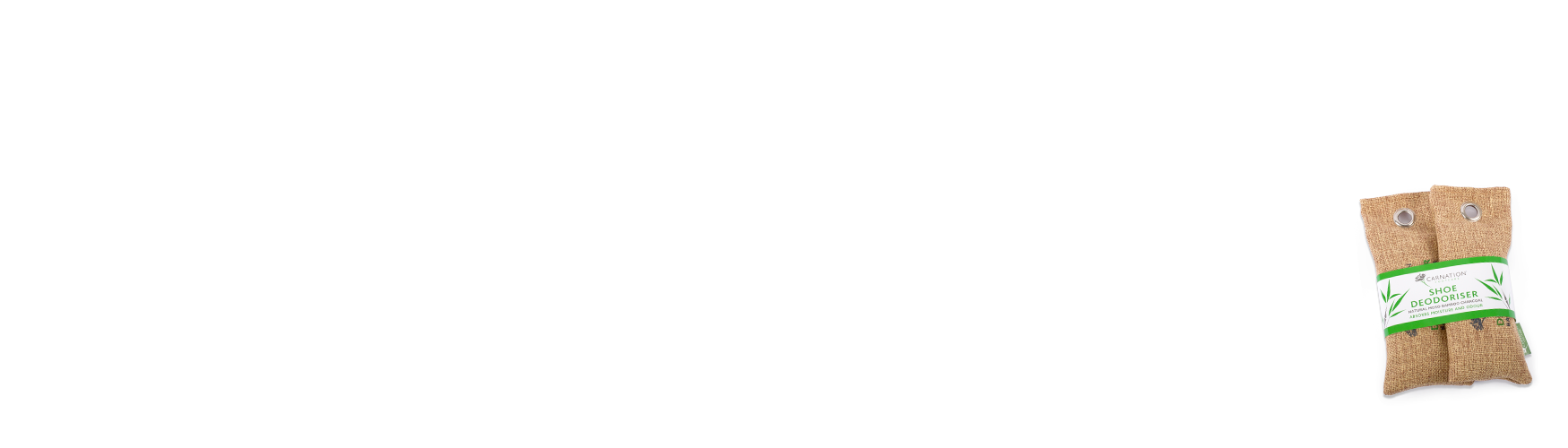 Shoe Deodoriser Slide 2